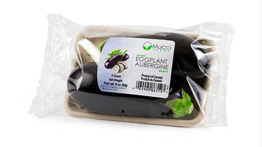 aubergine i plast